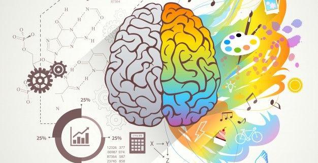 Sağ beyin Aktiviteleri, Sağ beyin Etkinlikleri